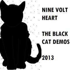 ninevoltheartblackcat