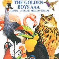 goldenboysep