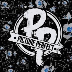 pictureperfectlogo